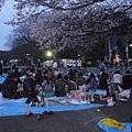 重回上野公園-因為早上的一則關於櫻花盛開的新聞,於是,老公突發奇想的說,我們去看日本人怎麼賞櫻花吧!.JPG