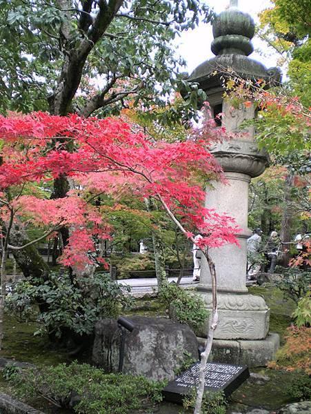 kyoto Jp 5