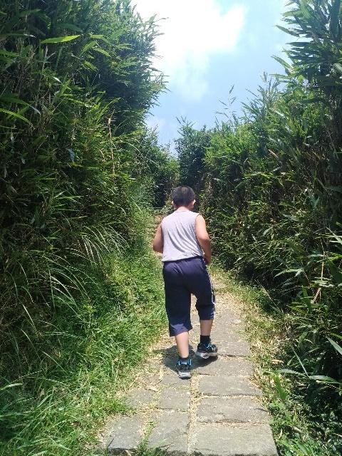 108081710 箭竹林步道.jpg