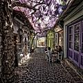 beautiful-streets-trellis-canopies-4__700.jpg