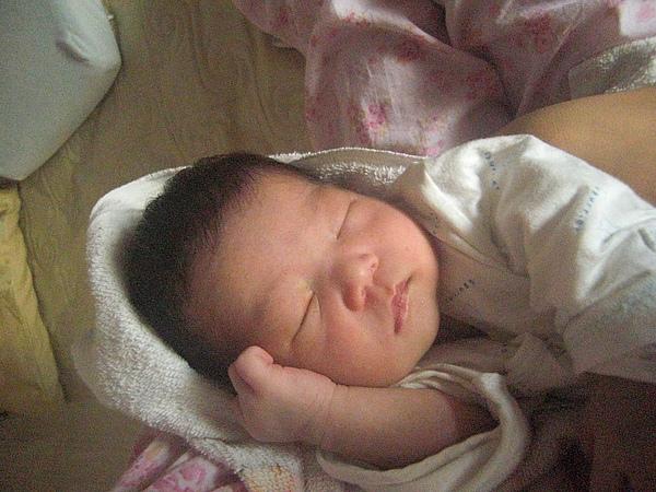 出生第2個星期.JPG