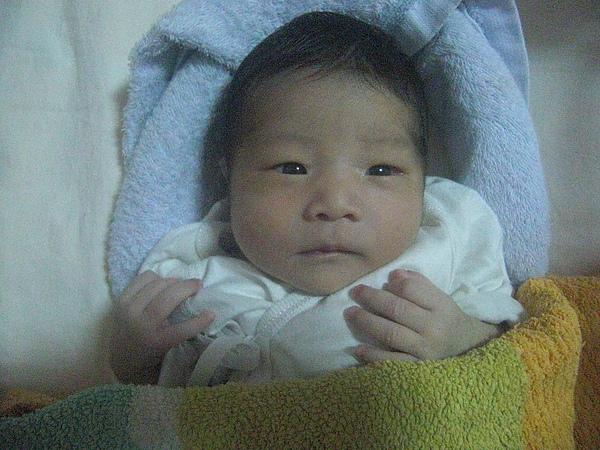 出生第1個星期1.JPG