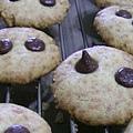 巧克力豆餅乾1
