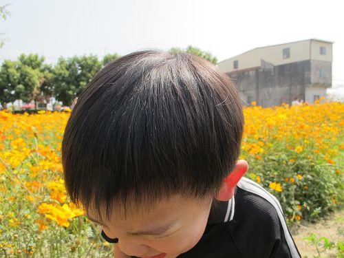 20130212-15高雄 (71)