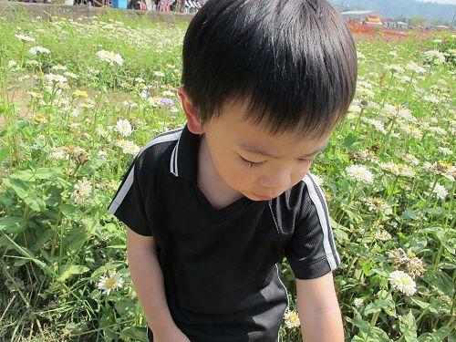20130212-15高雄 (105)