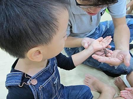 20131015昆蟲課 (58).jpg