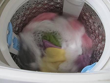 洗衣精 (14)