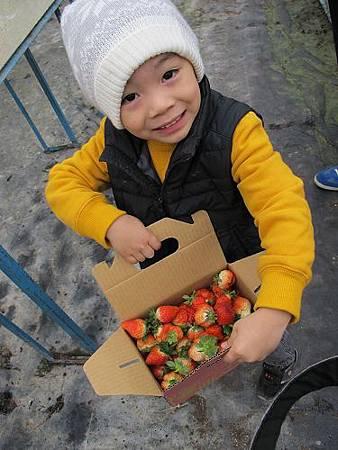 20140104採草莓 (79).jpg