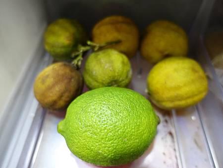 檸檬 (4)