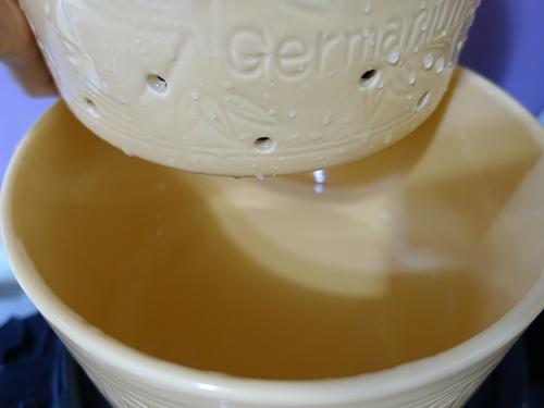 洋蔥原汁 (7).jpg