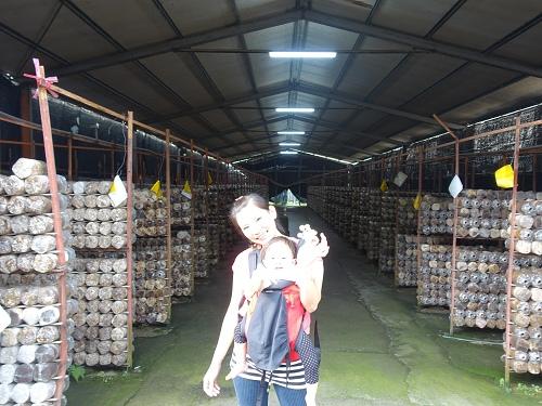 20140928豐年農場 (80).jpg
