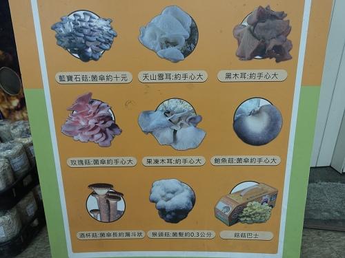 20140928豐年農場 (108).jpg