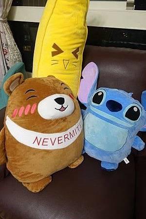 Nevermite雷伏蟎防蟎抱枕 (10).jpg