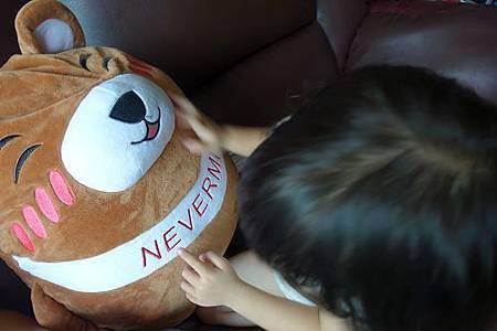 Nevermite雷伏蟎防蟎抱枕 (23).jpg