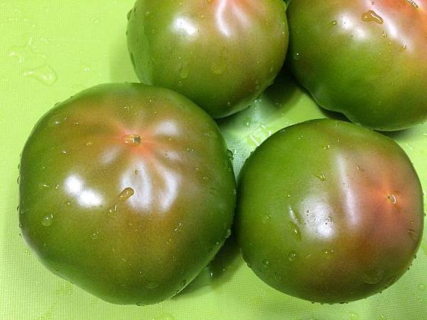 番茄盤 (1).jpg