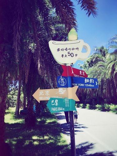 花蓮行 (407)
