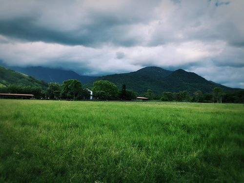 花蓮行 (457)