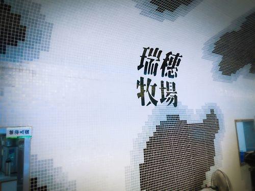 花蓮行 (495)