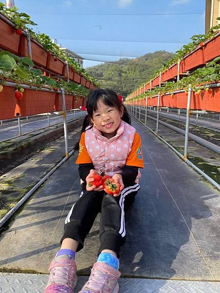 20191227阿根採草莓 (20).jpg