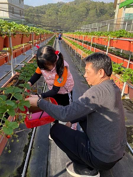 20191227阿根採草莓 (70).jpg