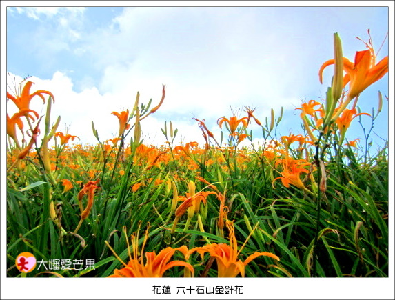 花蓮 058