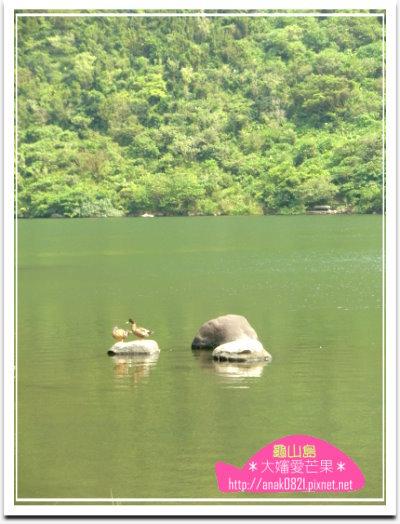 036龜尾湖.jpg