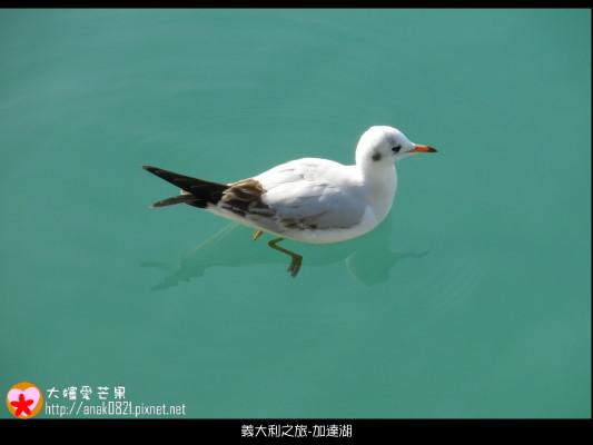 041加達湖.JPG