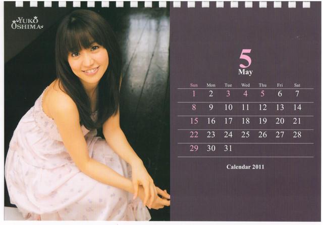 1400819535-2011 calendar.jpg