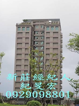 河成-五星尊爵No.7