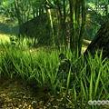 20040329105705914828_20040316_screen004_resize.jpg