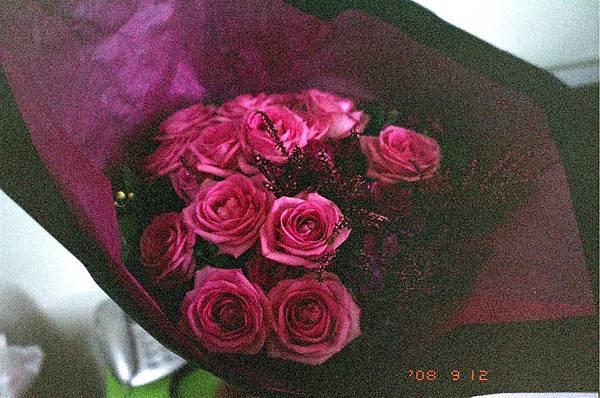 CN Flowers