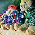 柏靈頓寶寶熊們