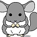 龍貓鼠3.jpg