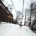 前往熊牧場的小纜車...也可以步行...