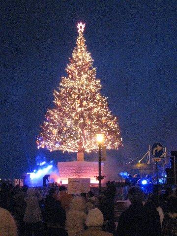金森倉庫知名的聖誕樹