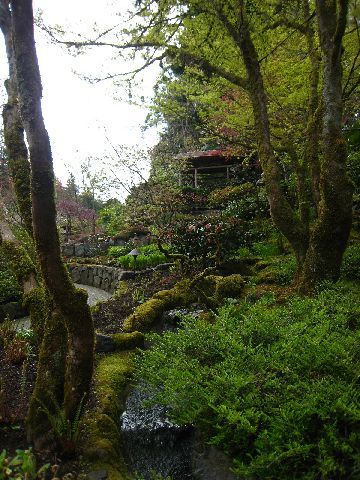 Japanese Garden一角