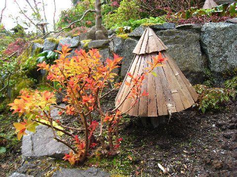 很有日式風味的竹簑與紅葉
