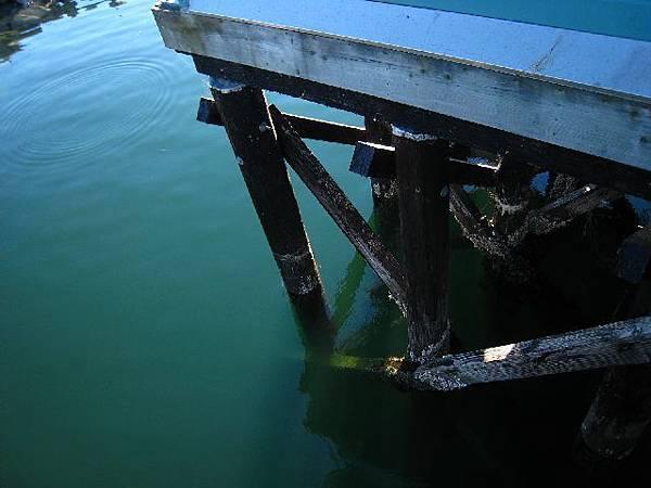水灣裡    水綠得像繪出來的色澤