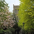 Windsor 9.jpg