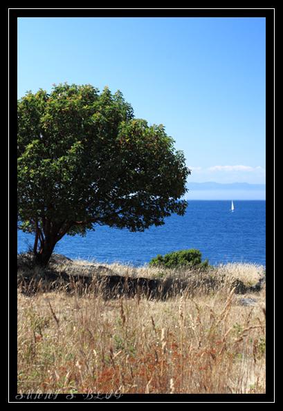 False Bay 1.jpg
