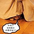 Momo 3.jpg