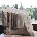 Colosseum14.jpg