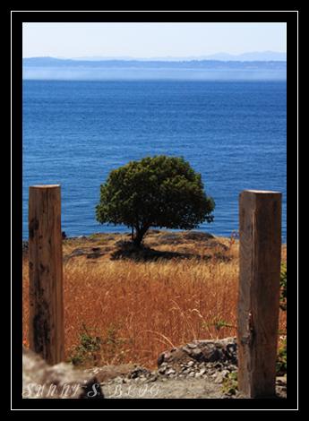 False Bay 4.jpg