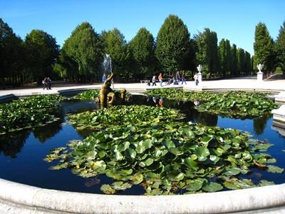Schloss Garten皇家庭園裡的水塘.JPG