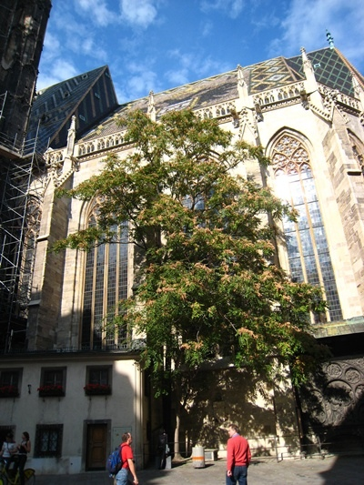 Stephansdom史蒂芬大教堂-3.JPG