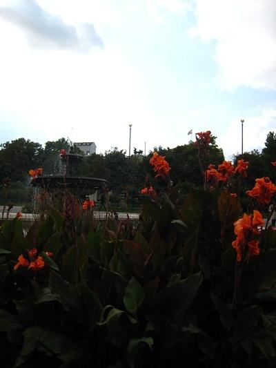 Volksgarten國民花園-9.JPG