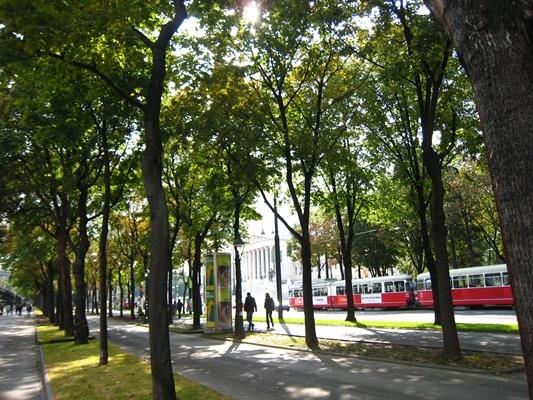 街景-1.JPG