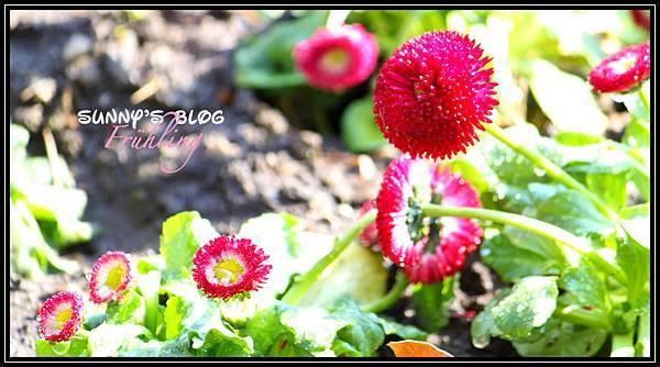 Der Frühling4.jpg