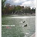 Jardin des Tuileries  5.JPG
