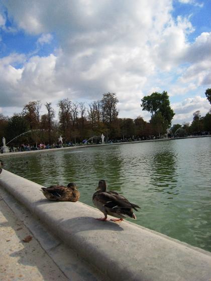 Jardin des Tuileries  7.JPG